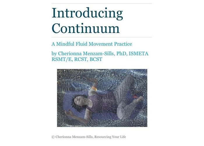 Introducing Continuum